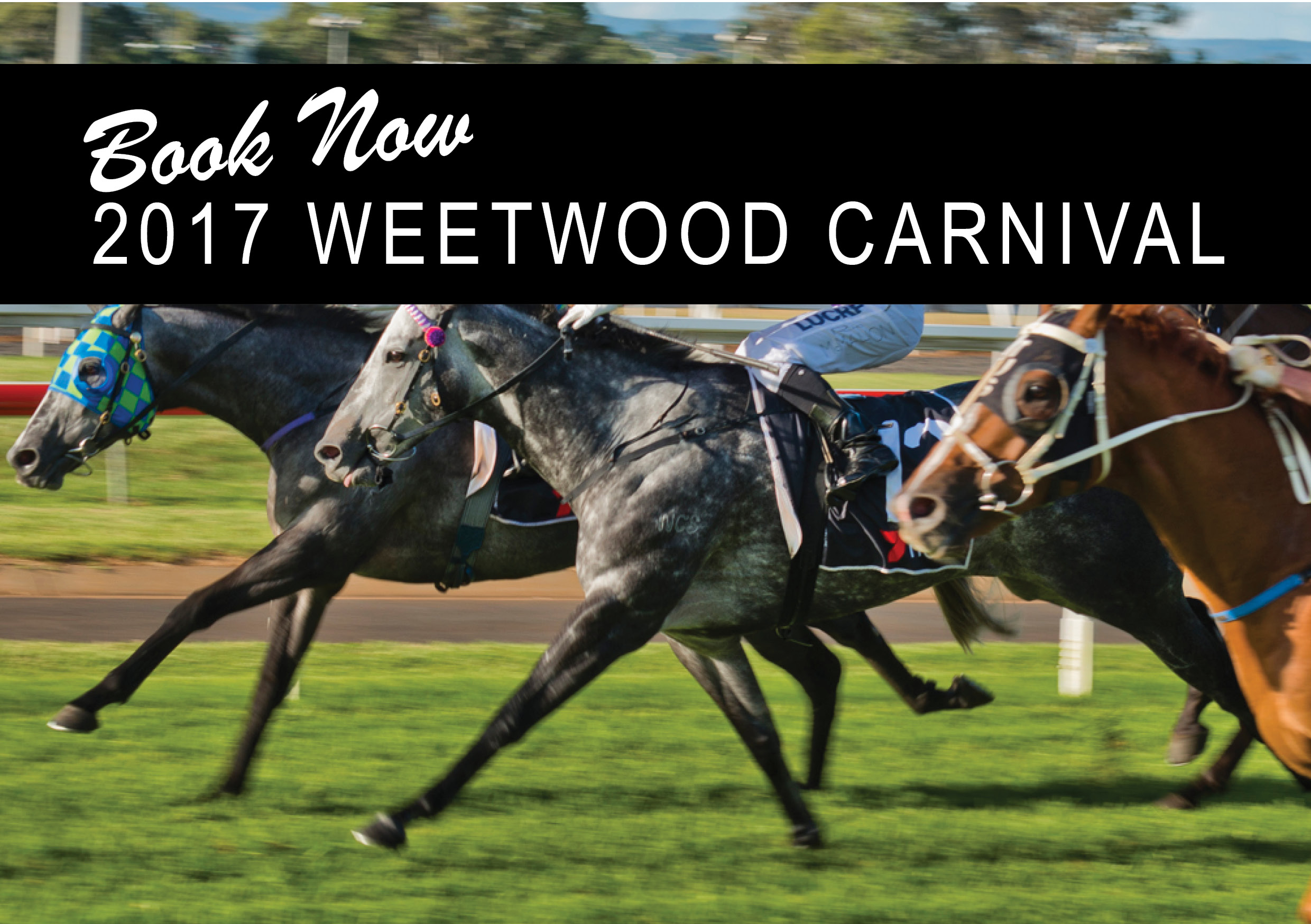 2017 Weetwood Carnival